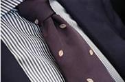 cravatta-home